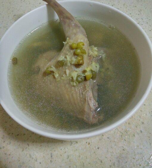五谷杂粮之老鸽绿豆汤